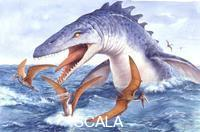 ******** Paleozoology - Cretacean period - Sea rectiles - Mosasaures - Tylosaurus - artwork picture by Peter David Scott