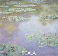 Monet, Claude (1840-1926) Water Lilies